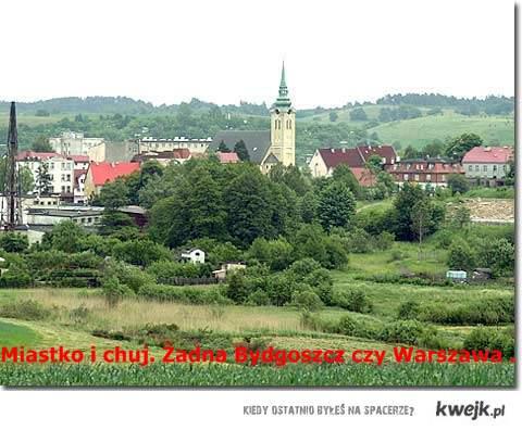 ; ] Miastko i chuj. Żadna Bydgoszcz czy Warszawa .