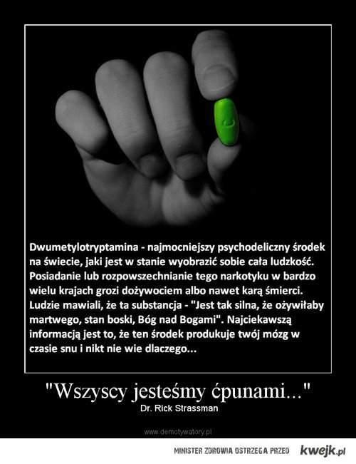 Dwumetylotryptamina