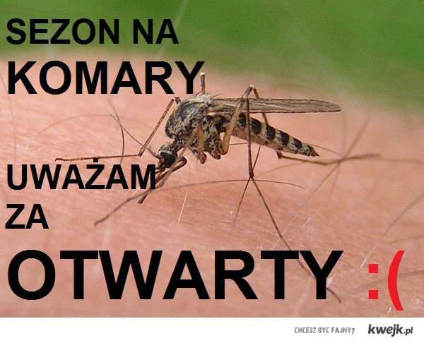 Sezon na komary