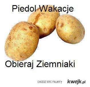 Obieraj Ziemniaki