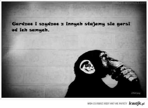 Mysląca małpa