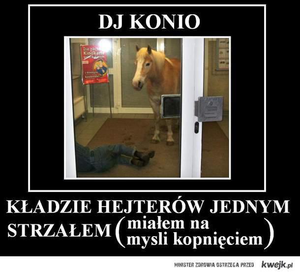 Konio fighter